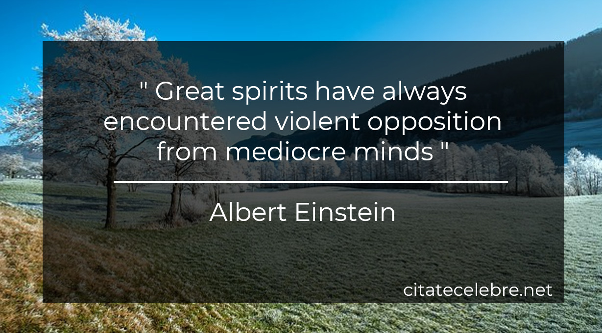 """"""" Great spirits have always encountered violent opposition from mediocre minds """""""