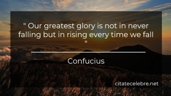 """ Our greatest glory is not in never falling but in rising every time we fall """