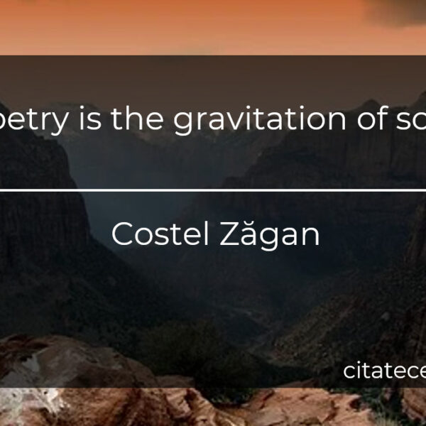 """Poetry is the gravitation of soul."""